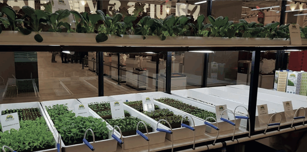 FairPrice opens a new store concept: Xtra