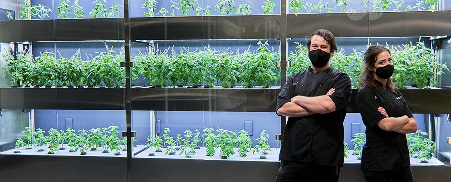 Fresh greens hit the vertical shelvesat Whole Foods