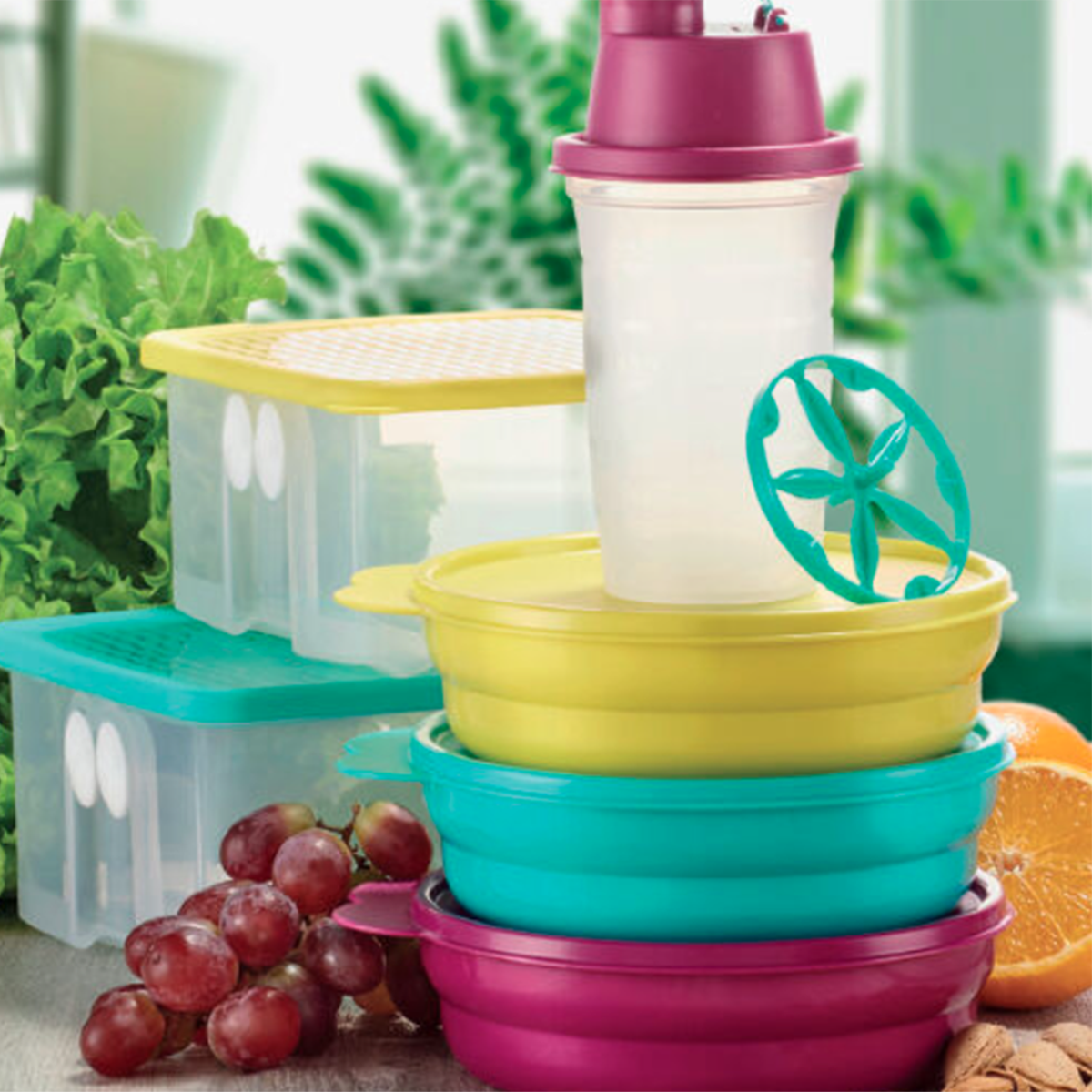 <strong>March</strong> | Tupperware parties in France