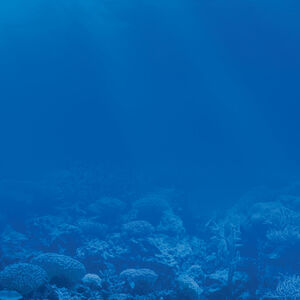 Smurfs -Life below water