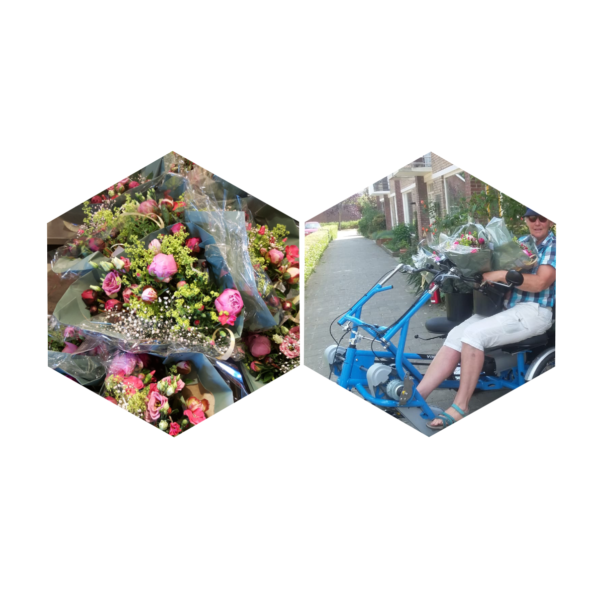 <strong>Swapping bike tours for flowers</strong>